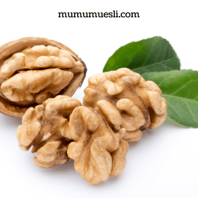 Walnut Benefits for Brain
